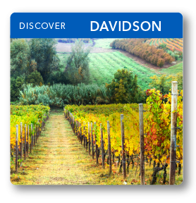 small thumbnail image for Davidson county (hyperlink)