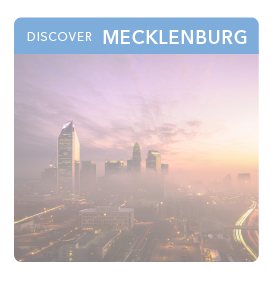 small thumbnail image for Mecklenburg county